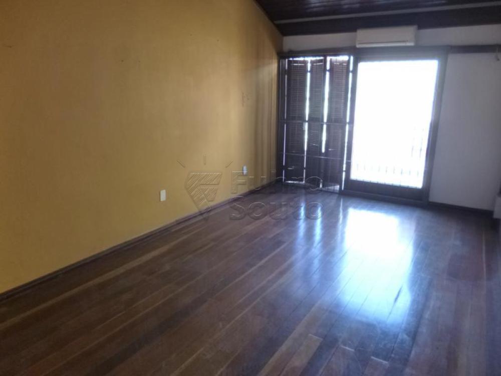 Comprar Casa / Padrão em Pelotas R$ 450.000,00 - Foto 12