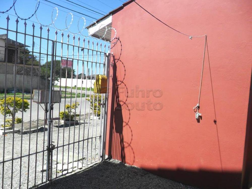 Alugar Casa / Padrão em Pelotas R$ 650,00 - Foto 6