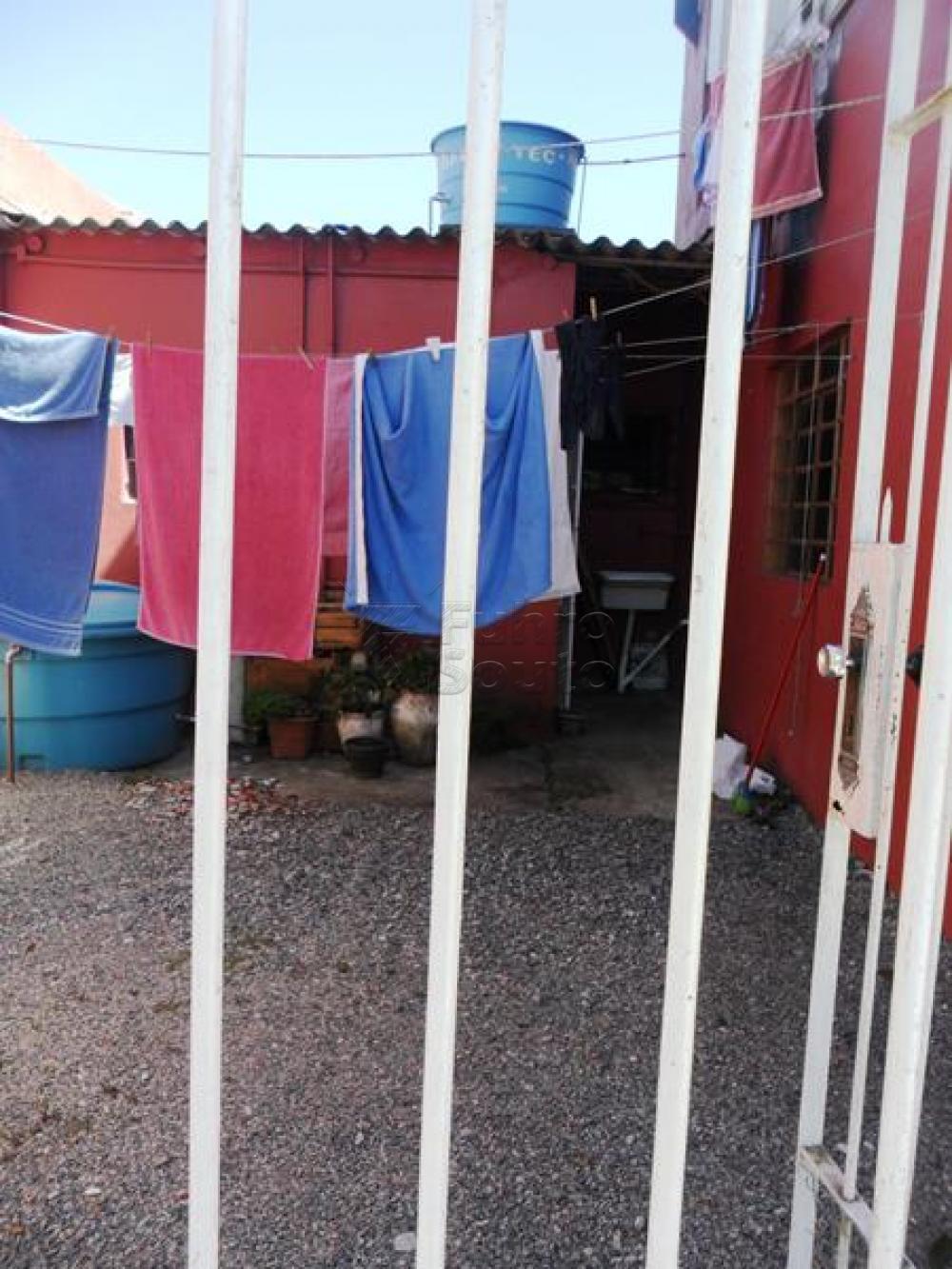 Alugar Casa / Padrão em Pelotas R$ 650,00 - Foto 7