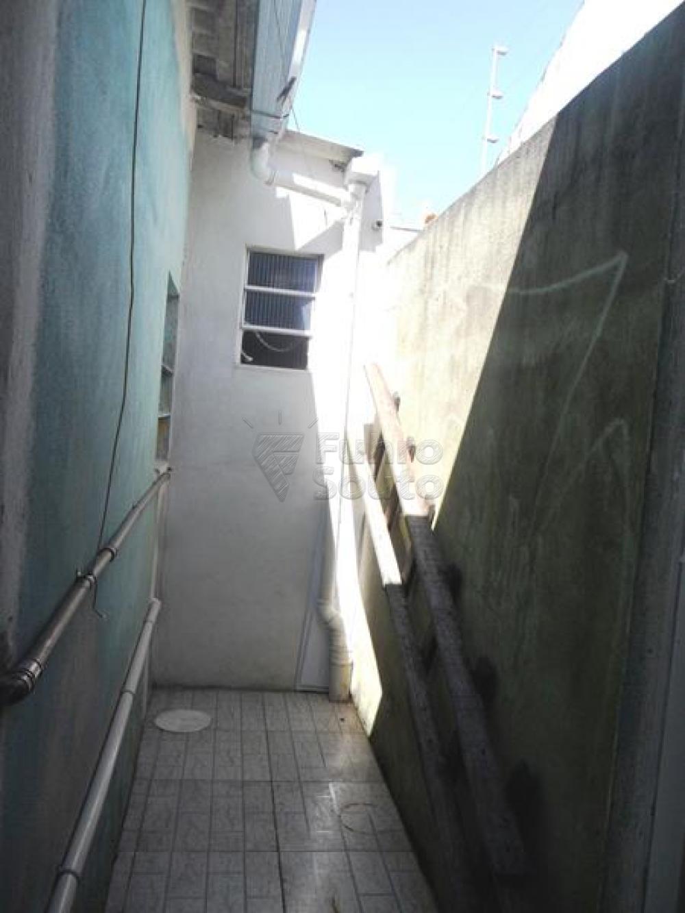 Alugar Casa / Padrão em Pelotas R$ 650,00 - Foto 8