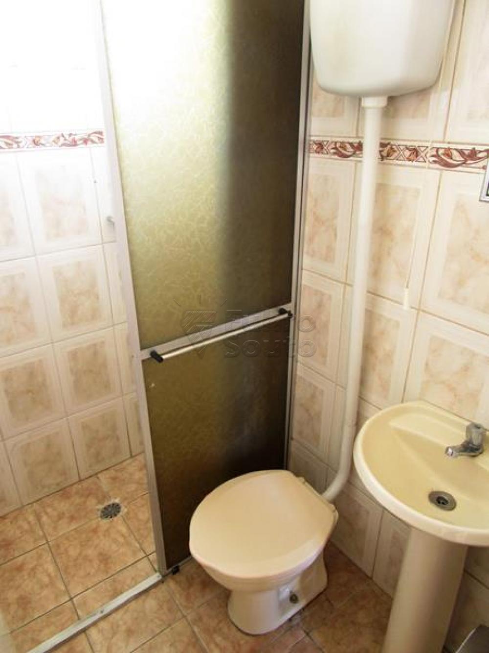 Alugar Apartamento / Fora de Condomínio em Pelotas R$ 650,00 - Foto 6