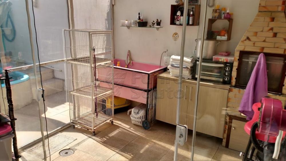 Comprar Casa / Padrão em Pelotas R$ 370.000,00 - Foto 11