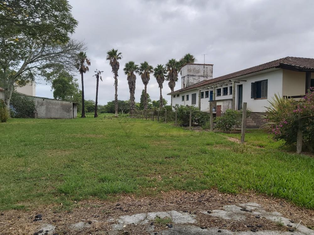 Comprar Casa / Padrão em Pelotas R$ 3.500.000,00 - Foto 28