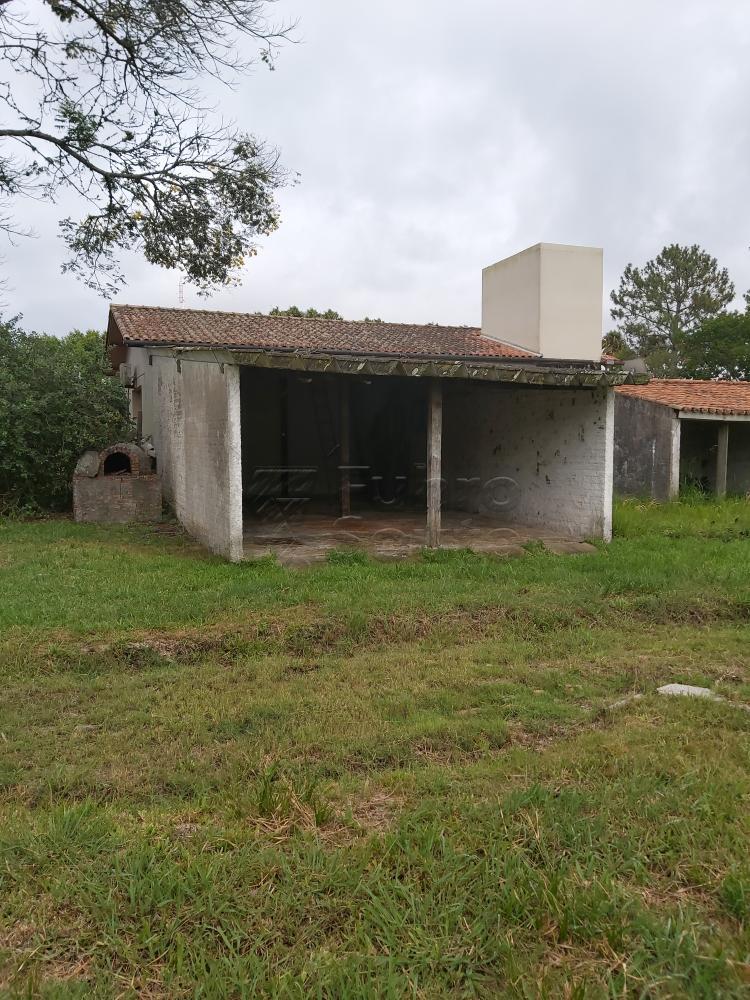 Comprar Casa / Padrão em Pelotas R$ 3.500.000,00 - Foto 12