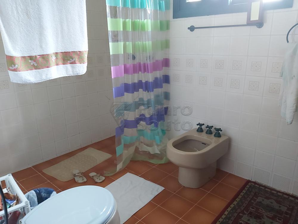 Comprar Casa / Padrão em Pelotas R$ 3.500.000,00 - Foto 16
