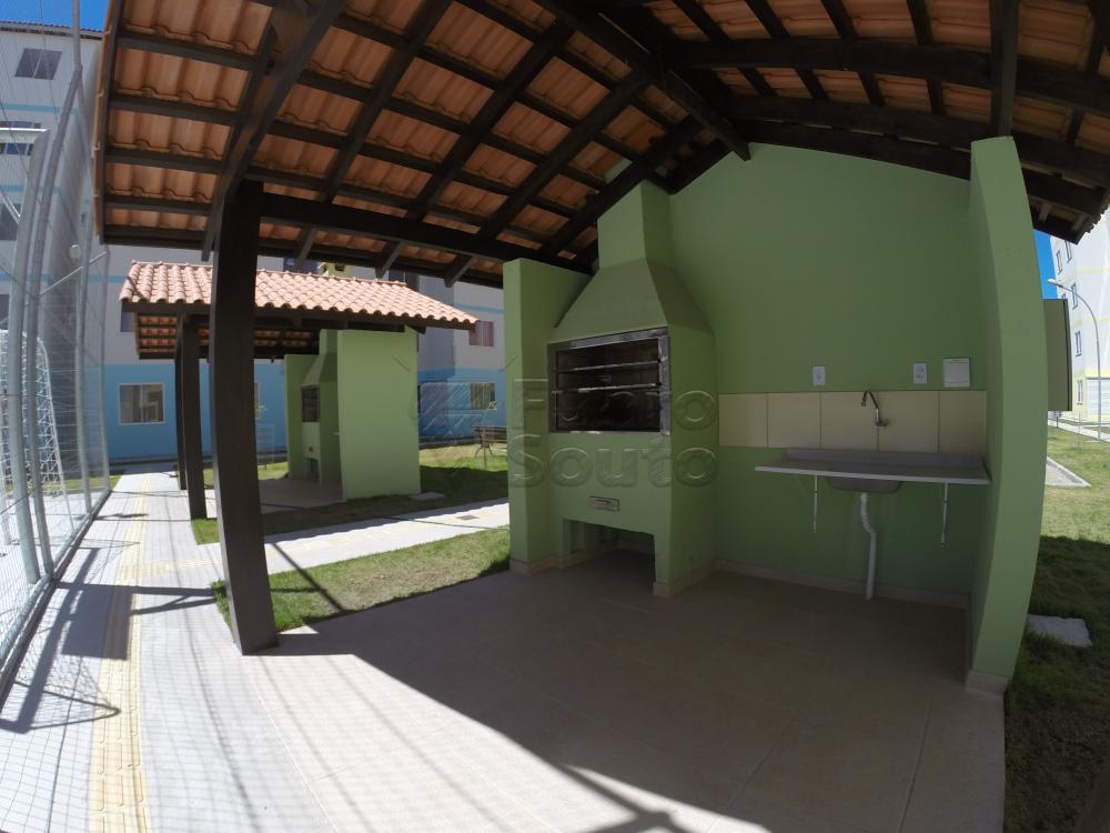 Comprar Apartamento / Padrão em Pelotas R$ 140.000,00 - Foto 8