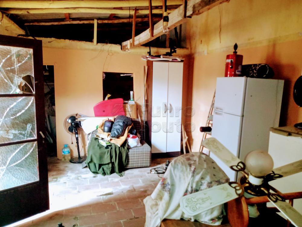 Comprar Casa / Padrão em Pelotas R$ 170.000,00 - Foto 13