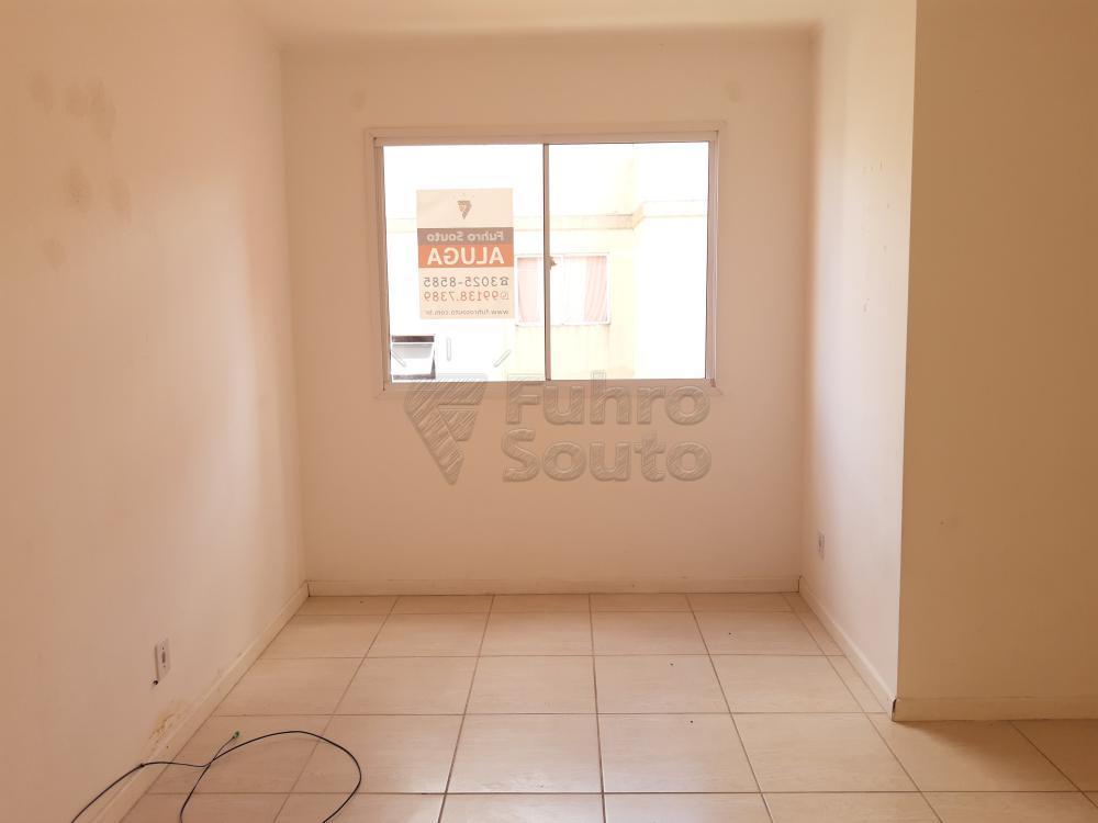 Alugar Apartamento / Padrão em Pelotas R$ 550,00 - Foto 1