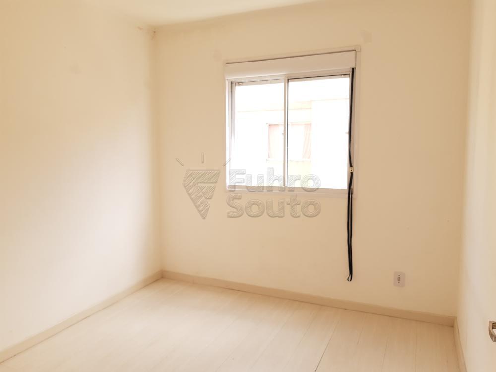 Alugar Apartamento / Padrão em Pelotas R$ 550,00 - Foto 5