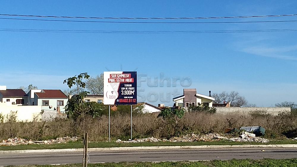 Comprar Terreno / Padrão em Pelotas R$ 5.800.000,00 - Foto 3