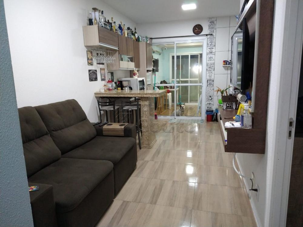 Comprar Casa / Condomínio em Pelotas R$ 190.000,00 - Foto 1