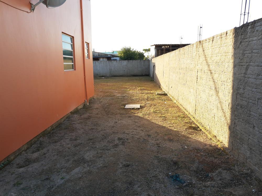 Alugar Casa / Padrão em Pelotas R$ 790,00 - Foto 22