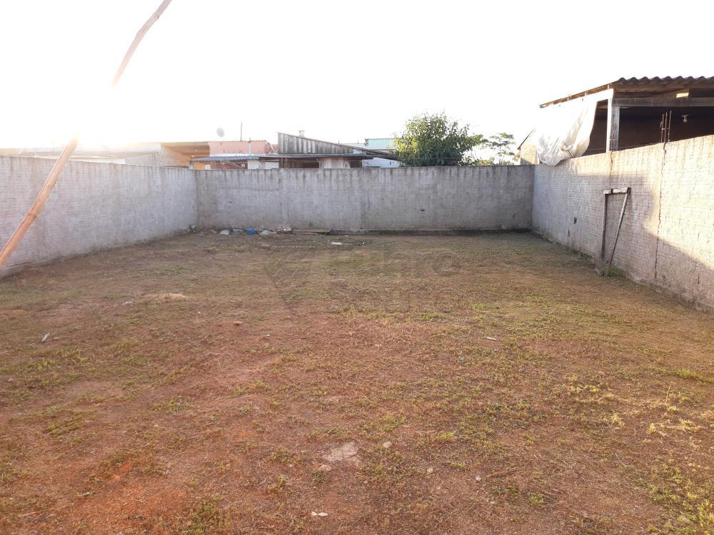 Alugar Casa / Padrão em Pelotas R$ 790,00 - Foto 23
