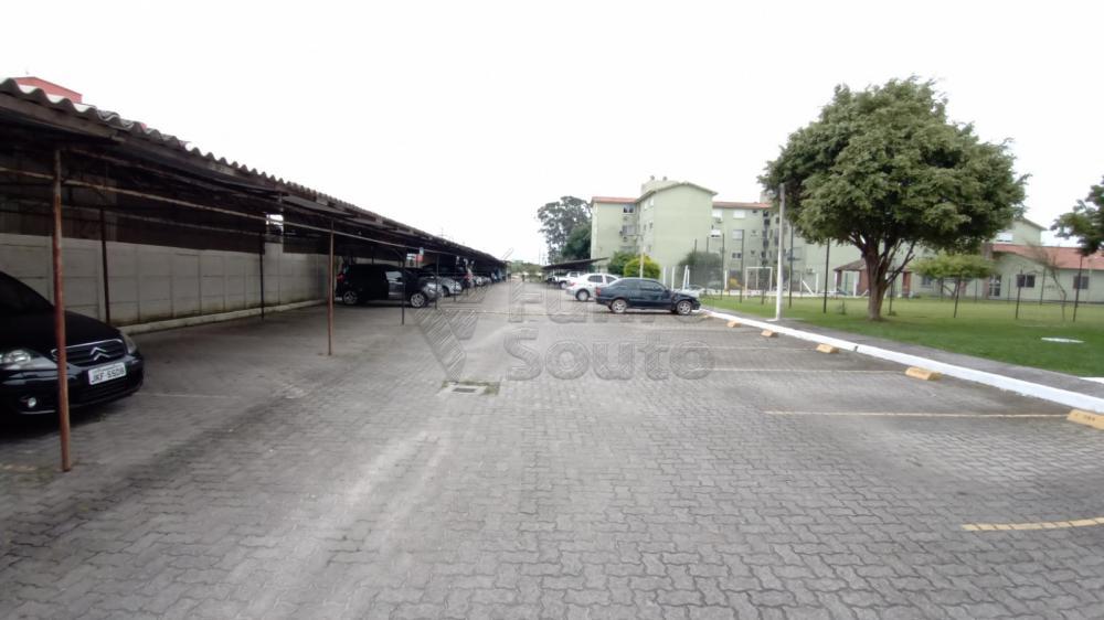 Comprar Apartamento / Padrão em Pelotas R$ 128.000,00 - Foto 9