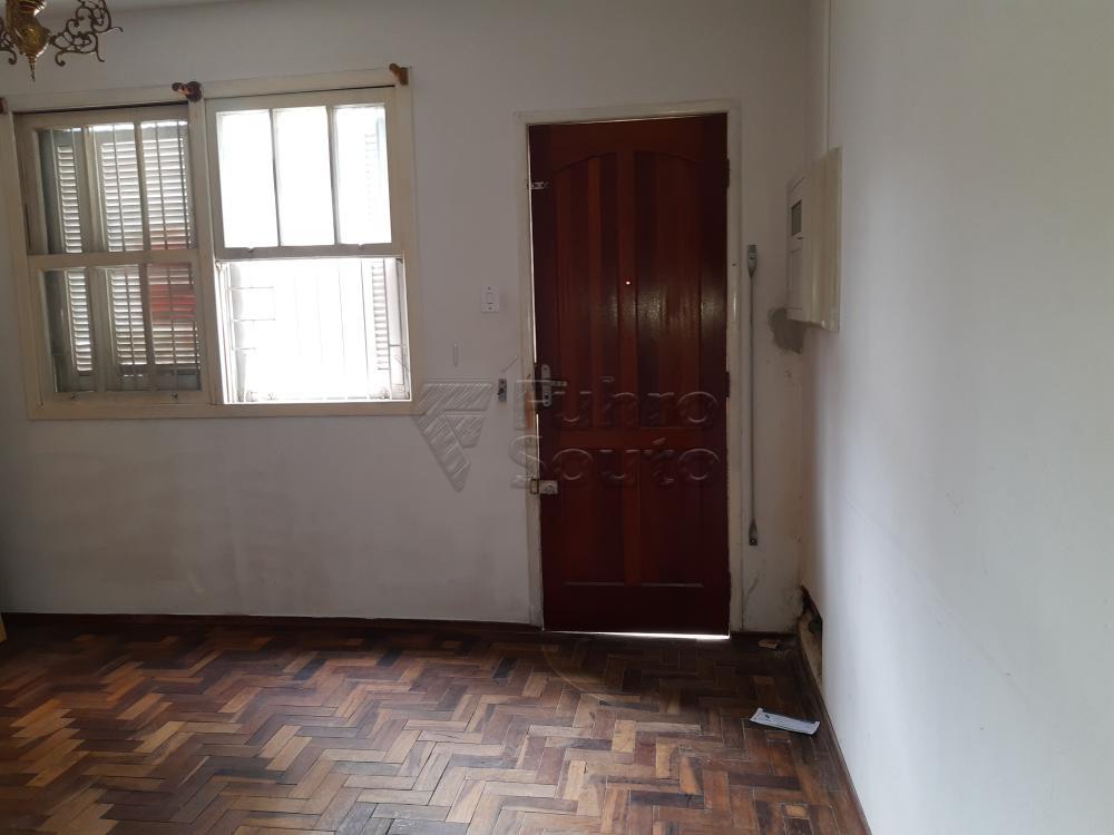 Alugar Apartamento / Fora de Condomínio em Pelotas R$ 800,00 - Foto 3