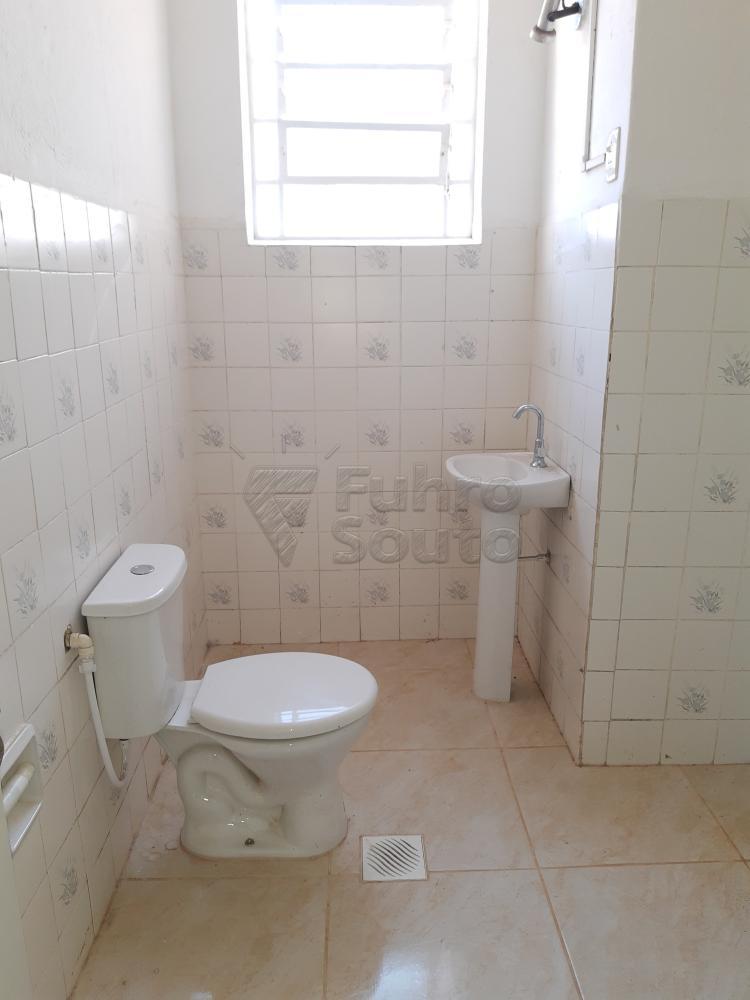 Alugar Apartamento / Fora de Condomínio em Pelotas R$ 980,00 - Foto 19