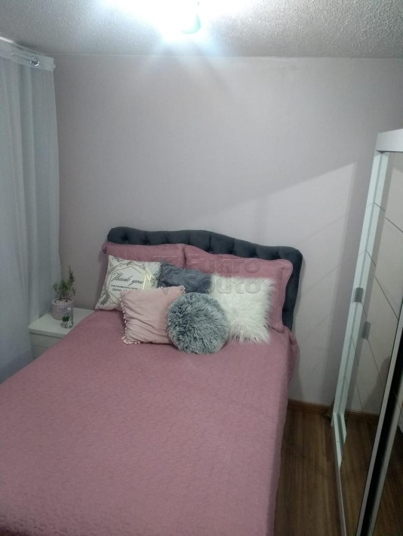 Comprar Apartamento / Padrão em Pelotas R$ 150.000,00 - Foto 10
