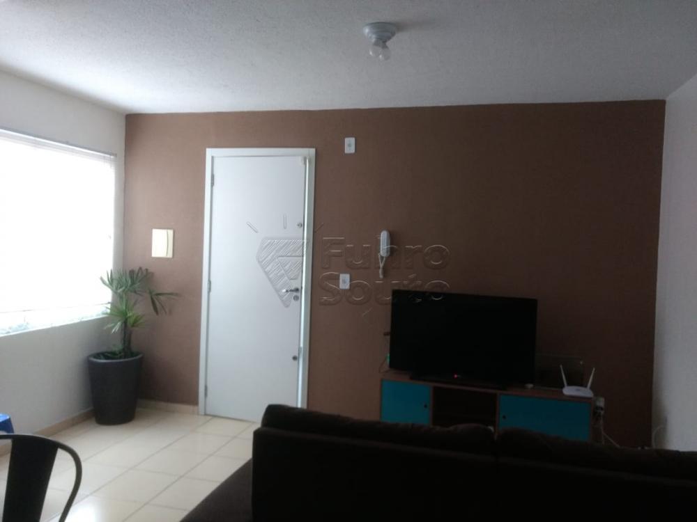 Comprar Apartamento / Padrão em Pelotas R$ 130.000,00 - Foto 8