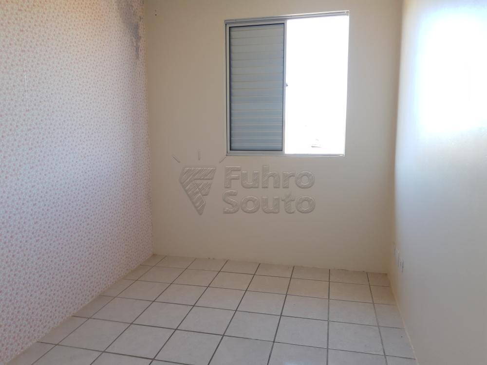 Alugar Apartamento / Padrão em Pelotas R$ 900,00 - Foto 4