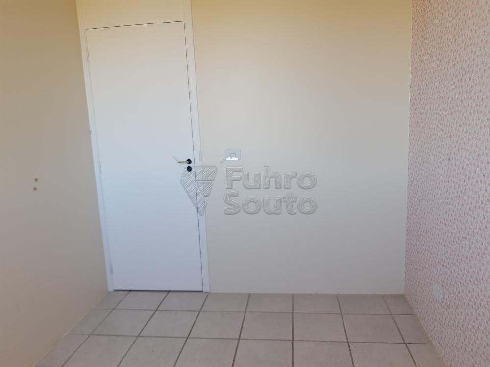 Alugar Apartamento / Padrão em Pelotas R$ 900,00 - Foto 5