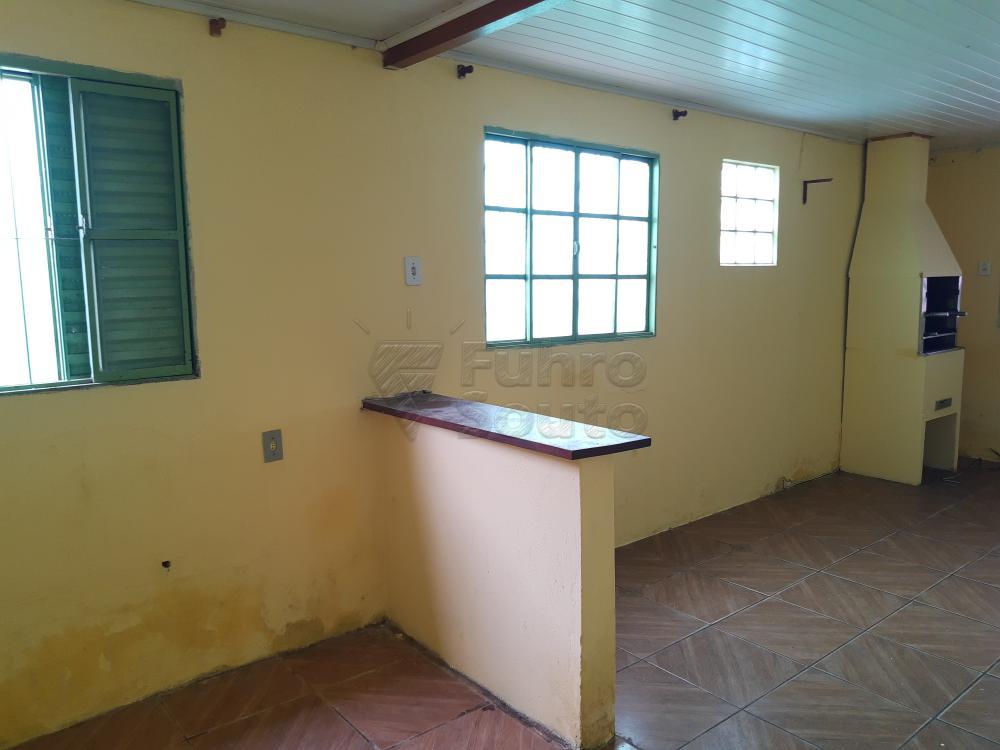 Alugar Casa / Padrão em Pelotas R$ 550,00 - Foto 5