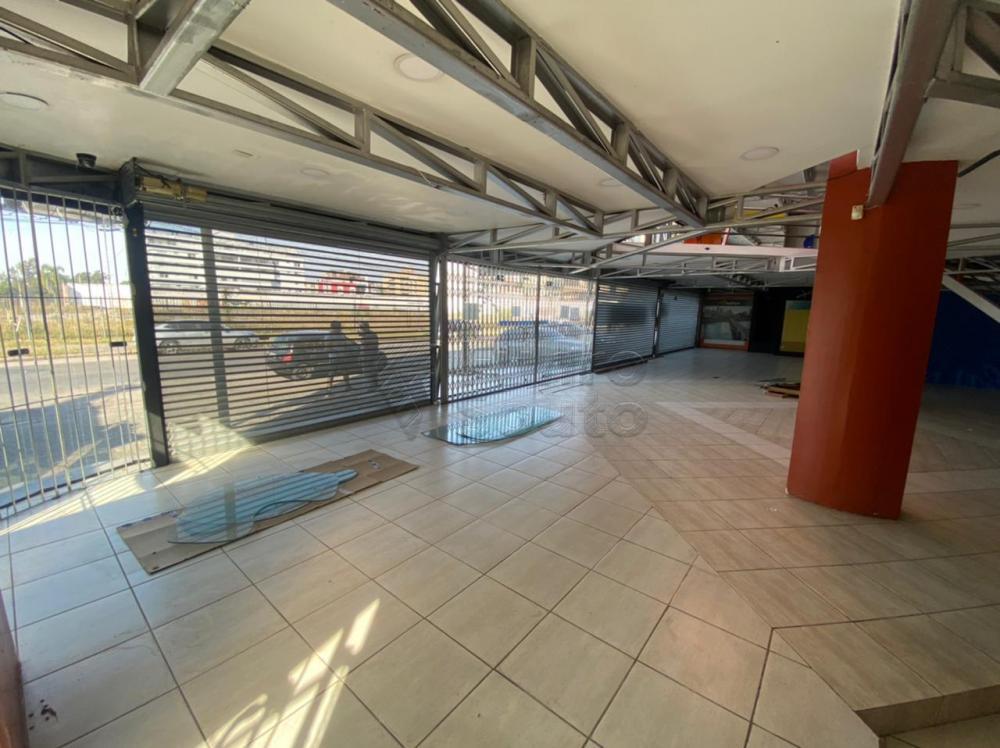 Alugar Comercial / Prédio em Pelotas R$ 16.500,00 - Foto 8