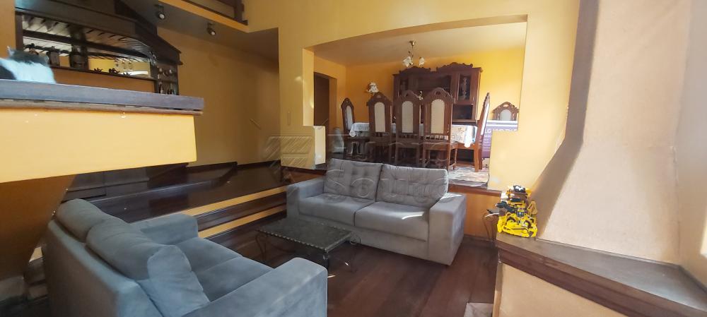 Alugar Casa / Padrão em Pelotas R$ 4.800,00 - Foto 1
