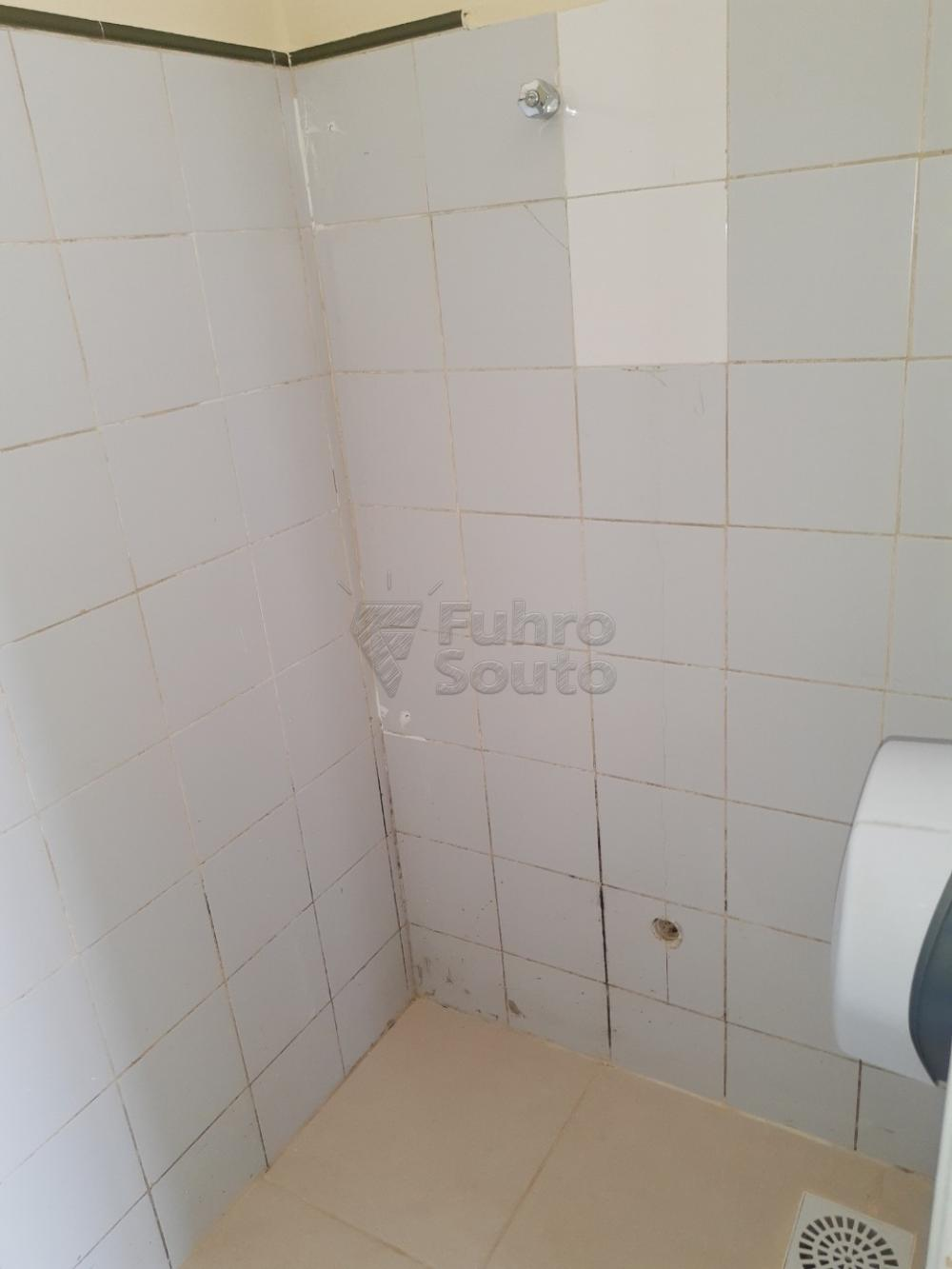 Alugar Casa / Padrão em Pelotas R$ 2.000,00 - Foto 26