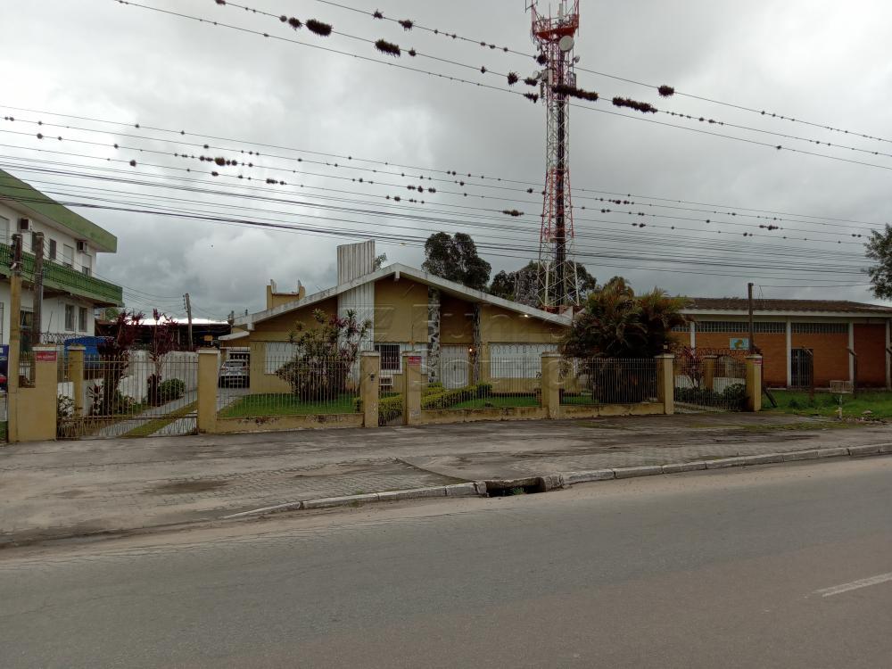 Alugar Casa / Padrão em Pelotas R$ 4.000,00 - Foto 1