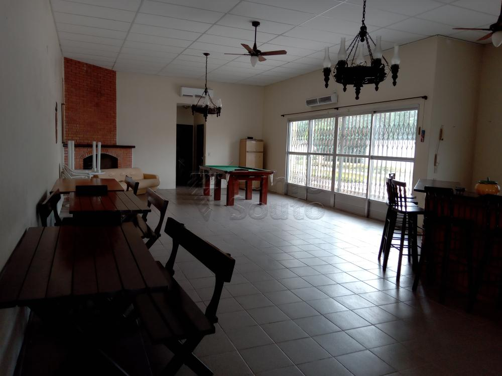 Alugar Casa / Padrão em Pelotas R$ 4.000,00 - Foto 8