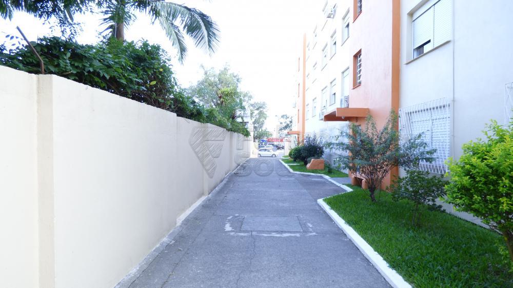 Comprar Apartamento / Padrão em Pelotas R$ 310.000,00 - Foto 4