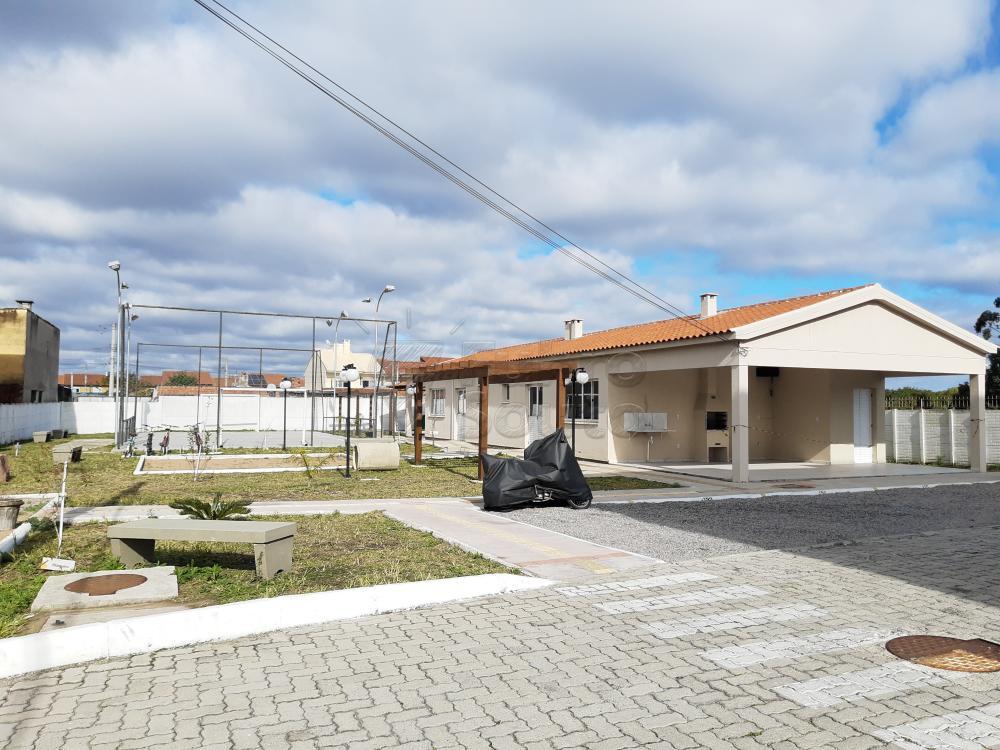 Alugar Apartamento / Padrão em Pelotas R$ 750,00 - Foto 7