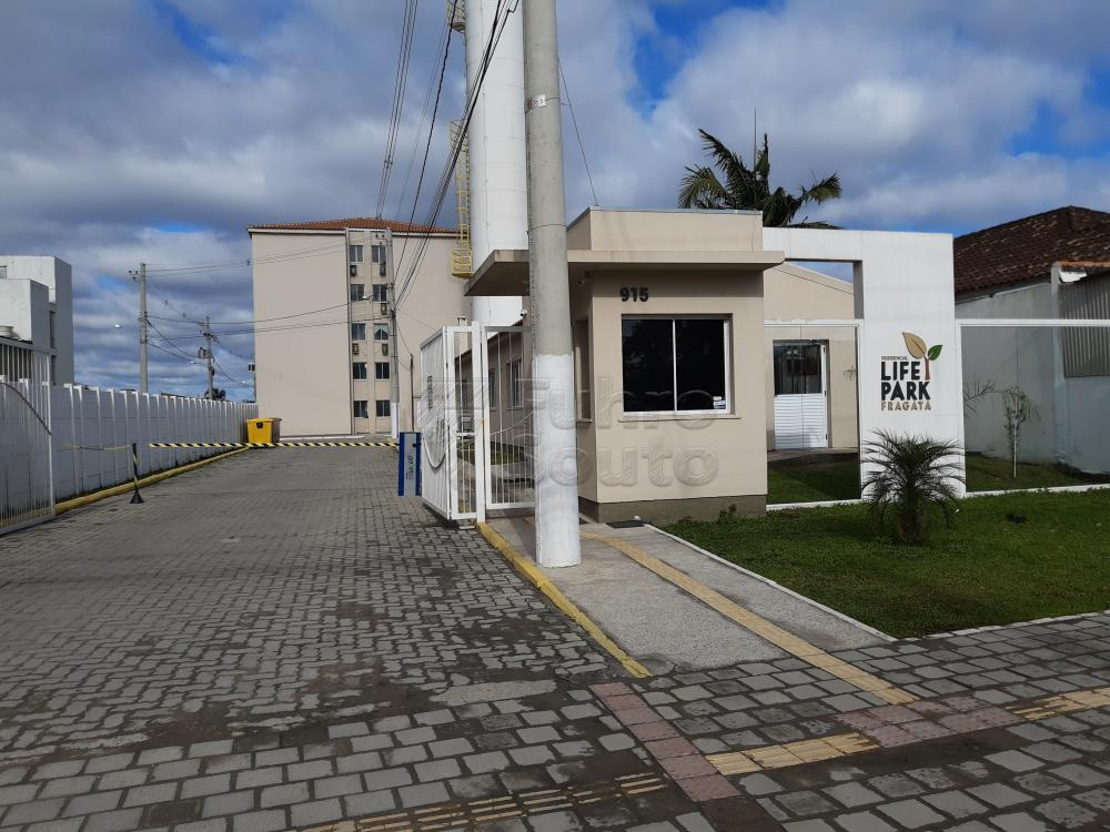 Alugar Apartamento / Padrão em Pelotas R$ 750,00 - Foto 4