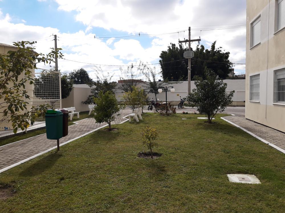 Comprar Apartamento / Padrão em Pelotas R$ 273.000,00 - Foto 7