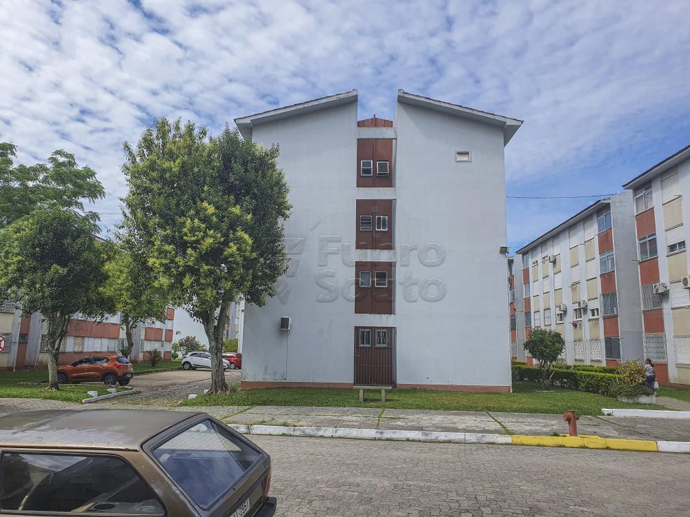 Comprar Apartamento / Padrão em Pelotas R$ 254.400,00 - Foto 1