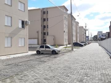 Alugar Apartamento / Padrão em Pelotas R$ 750,00 - Foto 8