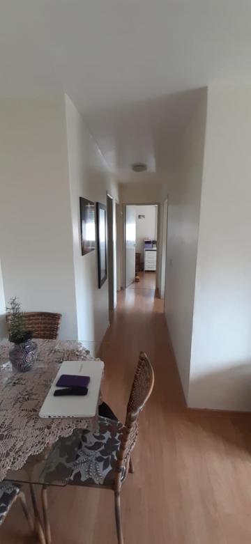 Alugar Apartamento / Padrão em Pelotas. apenas R$ 1.000,00