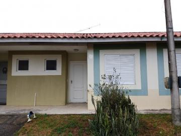 Alugar Casa / Condomínio em Pelotas. apenas R$ 700,00