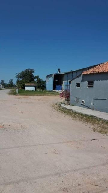 Pelotas Tres Vendas Area Venda R$2.335.000,00 2 Dormitorios  Area do terreno 44000.00m2