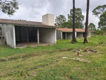 Comprar Casa / Padrão em Pelotas R$ 3.500.000,00 - Foto 29