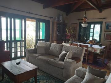 Comprar Casa / Padrão em Pelotas R$ 3.500.000,00 - Foto 3