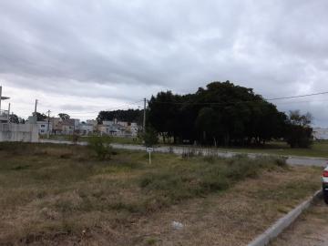Alugar Terreno / Padrão em Pelotas. apenas R$ 150.000,00