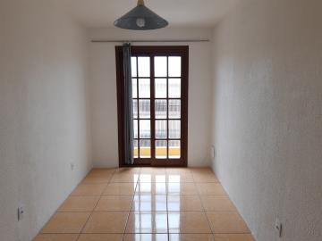 Alugar Casa / Padrão em Pelotas. apenas R$ 1.500,00