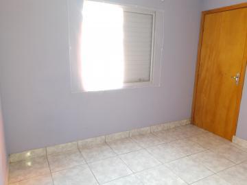 Alugar Casa / Padrão em Pelotas R$ 790,00 - Foto 14