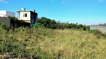 Comprar Terreno / Padrão em Pelotas R$ 795.000,00 - Foto 3