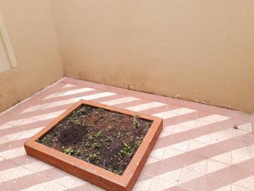Alugar Casa / Padrão em Pelotas R$ 1.800,00 - Foto 29