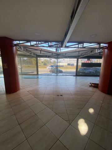 Alugar Comercial / Prédio em Pelotas R$ 16.500,00 - Foto 5