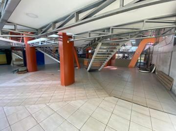 Alugar Comercial / Prédio em Pelotas R$ 16.500,00 - Foto 11