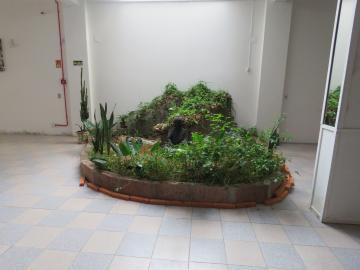 Alugar Comercial / Prédio em Pelotas R$ 5.000,00 - Foto 20