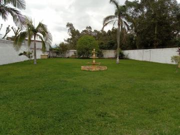 Alugar Casa / Padrão em Pelotas R$ 4.000,00 - Foto 3
